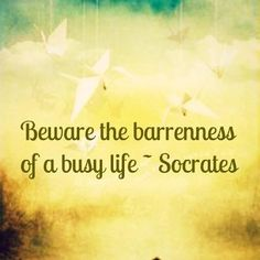 Collected Quotes from the great Greek philosopher Socrates BC). There is no proof that Socrates ever wrote anything, philosophical or biographical. Whatever information we derive about Socrates is… Brainy Quotes, New Quotes, Happy Quotes, Wisdom Quotes, Quotes To Live By, Funny Quotes, Life Quotes, Inspirational Quotes, Socrates Quotes