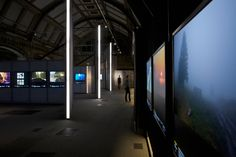 universal design studio: wildlife photographer of the year exhibition design - designboom | architecture