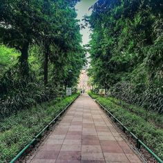 A walk with beautiful Nature