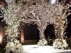 Cherry blossoms chuppah fabulous. http://www.judypaulendesigns.com/gallery.cfm#images/1EF9F0E5-BF41-D860-D1E7A6D001B3C160.jpg