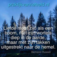 Liefde moet zijn als een boom, met zijn wortels diep in de aarde, maar met zijn takken uitgestrekt naar de hemel. - Bertrand Russell