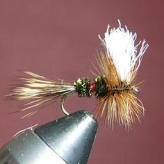 Royal Wulff - Great fly!