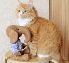 Купить Слоненок, друг Аристотеля - слоник тедди, кофейный кот, Ароматизированные игрушки, чердачные игрушки