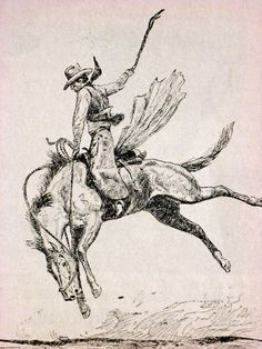 from Smokey the Cow Horse: illustration by Will James