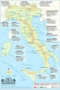 A really good map of the Italian wine regions and the predominant grapes grown. #ItalyWine