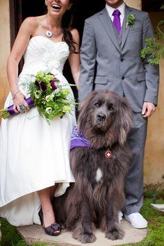 hilarious wedding photo by Christina Diane of Christina Diane Weddings