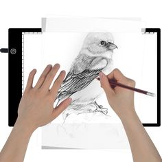 LED Tracing Light Box for Tracing, Drawing with Adujustable Brightness