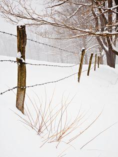 Storm Fence,New England