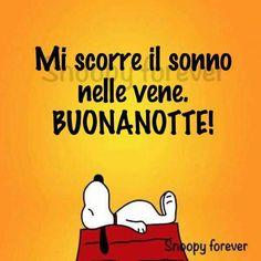 Buonanotte Snoopy Love, Motivational Phrases, Good Night, Humor, My Love, Funny, Fictional Characters, Peanuts, Woodstock