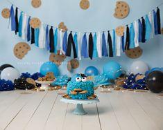 CakeSmashPhotography – Page 2 Diy 1st Birthday Cake, Boys First Birthday Party Ideas, Birthday Backdrop, Monster 1st Birthdays, First Birthdays, Baby Boy Cookies, Baby Boy Invitations, Cake Smash Photos, Smash Cakes