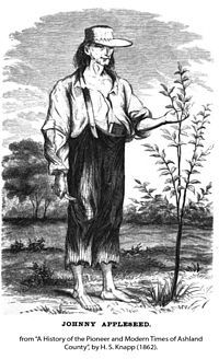 John Chapman (September 26, 1774 – March 18, 1845), also known as Johnny Appleseed, was an American pioneer nurseryman who introduced apple trees to large parts of Pennsylvania, Ohio, Indiana, and Illinois. He became an American legend while still alive, largely because of his kind and generous ways, his great leadership in conservation, and the symbolic importance he attributed to apples.