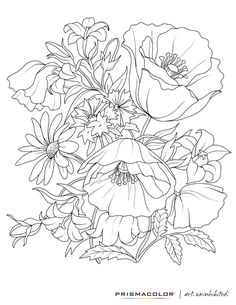 http://ColoringToolkit.com --> What a beautiful flower adult coloring page! --> For the most popular adult coloring books and writing utensils including gel pens, colored pencils, watercolors and drawing markers, visit our website displayed above. Color... Relax... Chill.