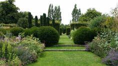 buis en boule, cyprès et plantes à fleurs dans le jardin vert