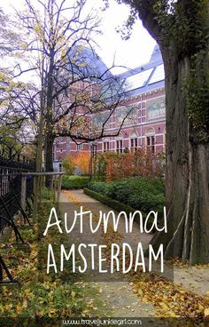 Discover Autumn in Amsterdam, a blog by www.traveljunkiegirl.com