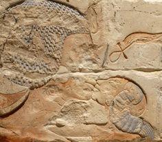 Amarna Artefacts.