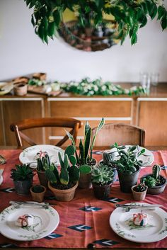 add a small collection of plants to a table to create a simple center piece.