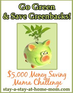 http://www.stay-a-stay-at-home-mom.com/green-energy-savings.html Go Green and Save Greenbacks Piggy Bank! Learn money saving ways to help the environment. Part of the Money Saving Mama Challenge.