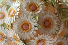 paper gerbera daisies.