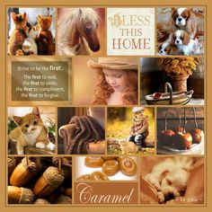 Rich Caramel ~ by mea ~ I Need A Hobby, Color Collage, Thought Of The Day, Winter Theme, Photo Editor, Mood Boards, Compliments, Caramel, Inspirational Quotes