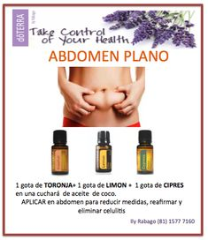 Abdomen plano Essential Oil Perfume, Doterra Essential Oils, Essential Oil Blends, Doterra Cedarwood, Doterra Oils, Young Living Oils, Young Living Essential Oils, Doterra Blends, Esential Oils