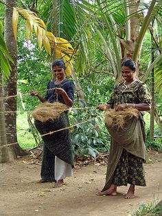 Production of coir in Kerala, India (2005)