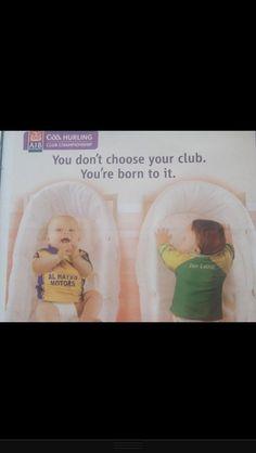 Born to play Gaa! Irish Culture, Man United, Like A Boss, Rugby, Qoutes, Grass, Football, Baseball Cards, Play