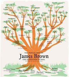 """I was asked to illustrate a family tree of James Brown's music by the NBC Universal marketing team in an effort to drive sales of the """"Get On Up"""" DVD. Sabrina Rojas Weiss wrote the copy and developed the content. I did illustration and layout. James Brown, Eric B And Rakim, Michael Beck, Get On Up, Music Tree, Fela Kuti, Odd Future, J Cole, The Dj"""
