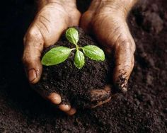 La Unesco impulsa las reservas de biosfera como motor de un desarrollo sostenible - Contenido seleccionado con la ayuda de http://r4s.to/r4s