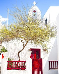 Mykonos | Cyclades Islands | Greece  Photo from @theroamrunner! Check her beautiful gallery!  Good morning to everybody and wish you have a great day!  http://ift.tt/2iT6Eeg