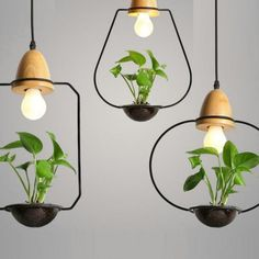 Create a beautiful home garden composition by combining these creative pendant lamps. Bring life inside with these Pendant Lamp Planters! It is particularly great for long hanging plants such as Golde Wood Pendant Light, Kitchen Pendant Lighting, Modern Pendant Light, Pendant Lights, Pendant Lamps, Modern Hanging Lights, Hanging Light Bulbs, Beautiful Home Gardens, Wrought Iron Decor