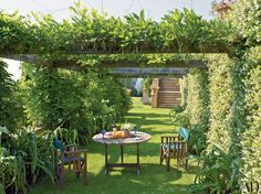 25 Garden Trellises and Pergolas Perfect for Summer Relaxation Photos | Architectural Digest