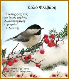 Good Night, Good Morning, New Month, Cute, Animals, Winter, Nighty Night, Buen Dia, Winter Time