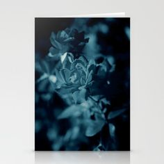 #Midnight #Blue #roses, #art 10% OFF + FREE SHIPPING ON EVERYTHING TODAY!  Set of folded stationery cards printed on bright white, smooth card stock to bring your personal artistic style to everyday correspondence.  Each card is blank on the inside and includes a soft white, European fold envelope for mailing.