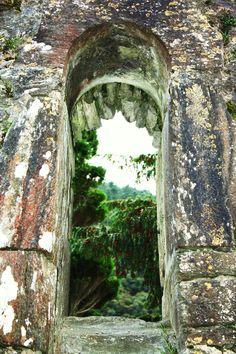 Ancient Ruins Irish Cemetery