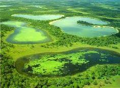 Pantanal, Mato Grosso e Mato Grosso do Sul