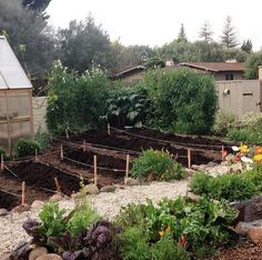 What a cute,potentially cozy garden layout. This is a great article about making a cut flower garden. Note the green house on left side. Flower Garden Plans, Cut Flower Garden, Flower Farm, Flower Beds, Cut Garden, Garden Beds, Flower Gardening, Garden Spaces, Flower Girls
