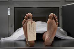 """L'obiettivo degli scienziati sarà quello di """"rigenerare"""" il cervello di individui clinicamente morti attraverso un mix di terapie. Con questa idea, un gruppo di scienziati statunitensi ha dato il via a un progetto per """"riportare in vita"""" i soggetti clinicamente morti."""