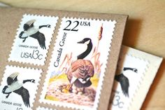Canadian Geese Stationery Letter Writing Canada by EdelweissPost