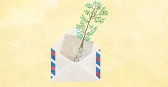 If a family tree falls in my email forest, it's because I am meant to hear it. And, more importantly, to recognize where it really came from.