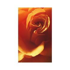 ==>>Big Save on          Rose Flower Wrapped Canvas Canvas Print           Rose Flower Wrapped Canvas Canvas Print we are given they also recommend where is the best to buyHow to          Rose Flower Wrapped Canvas Canvas Print lowest price Fast Shipping and save your money Now!!...Cleck link More >>> http://www.zazzle.com/rose_flower_wrapped_canvas_canvas_print-192933233524520101?rf=238627982471231924&zbar=1&tc=terrest