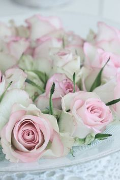 ♥ These Roses