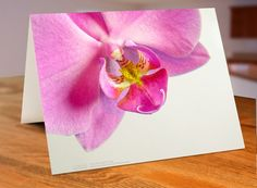 Hey, I found this really awesome Etsy listing at https://www.etsy.com/listing/256455778/phalaenopsis-1-card