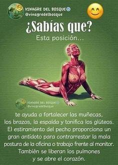 Salud Sup Yoga, Yoga Gym, Fitness Del Yoga, Health Fitness, Kundalini Yoga, Yoga Meditation, Namaste Yoga, Yoga Tips, Excercise