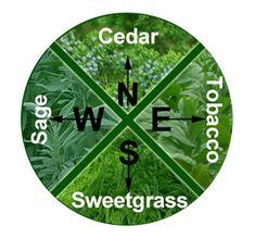 The Native American medicine wheel symbolizes life's cycles. Medicine Wheel Plants