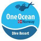 oneocean dive resort norway