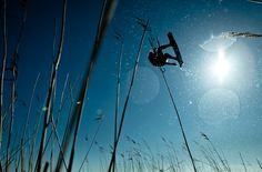 Reeds. Jimmi Dams I photo Lars Daniel Terkelsen