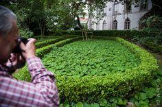 Já estão anunciados os próximos Workshops de Fotografia In Vivo no espetacularMuseu Nacional de História Natural e da Ciência/Jardim Botânico em Lisboa, depois dos muito bons In Vivos feitos da Pr...