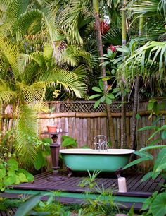 Tropical oasis with clawfoot tub