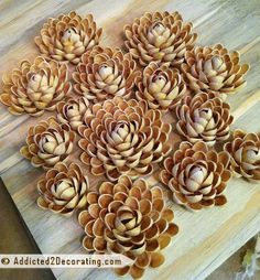pistachio shell flowers DIY - - now I have something to do with all of those shells! Hanging Succulents, Faux Succulents, Succulents Garden, Shell Flowers, Diy Flowers, Paper Flowers, Nature Crafts, Fun Crafts, Pistachio Shells