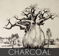 Charcoal baobab .... Love charcoals! African Art, Guest Room, Charcoal, Moose Art, Sketch, Trees, Posters, Drawings, Animals